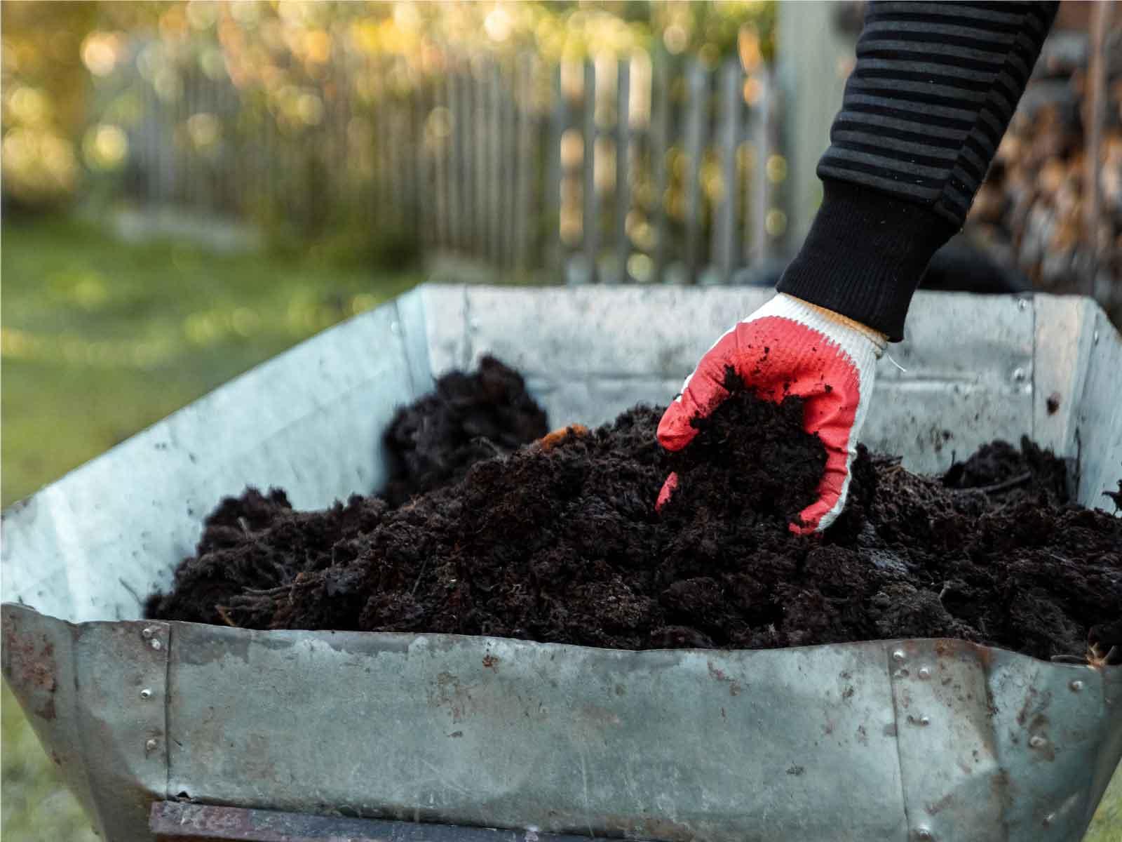 ¿Sabes qué es el compostaje? Entérate en qué consiste